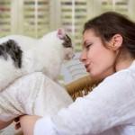 Как бороться с аллергией на кошек — 10 способов