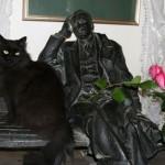 Известные кошки —  Смадж, знаменитость Глазго