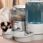 Выбираем автоматическую кормушку для кошек и отдыхаем спокойно
