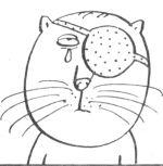 Чем протирать глаза котенку