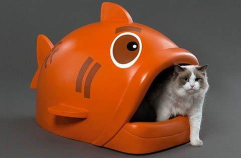 cat_tualet-2