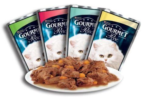 Кормить кота кормом для котят