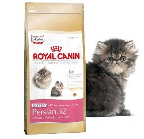 royal-canin-persian-kitten-32