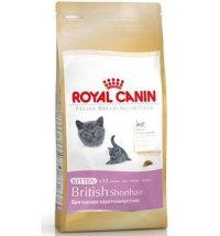 royal_canin_british_kitten
