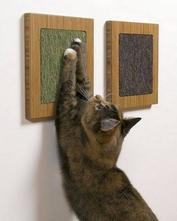 ножницы для стрижки когтей у кошек